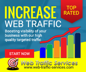 Web-Traffic-Services banner - 300x250